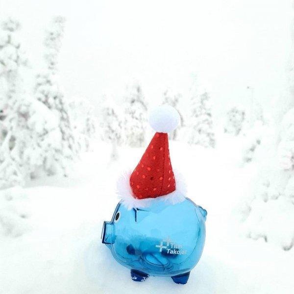 Tilin Takojat toivottaa kaikille hyvää, makiaa ja rauhallista Joulua 🐽❄❤ #joulu2020 #tilitoimisto #sininenpossu #oulu #...